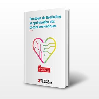 Etude-de-cas-Stratégie-de-netlinking-et-optimisation-des-cocons-semantiques